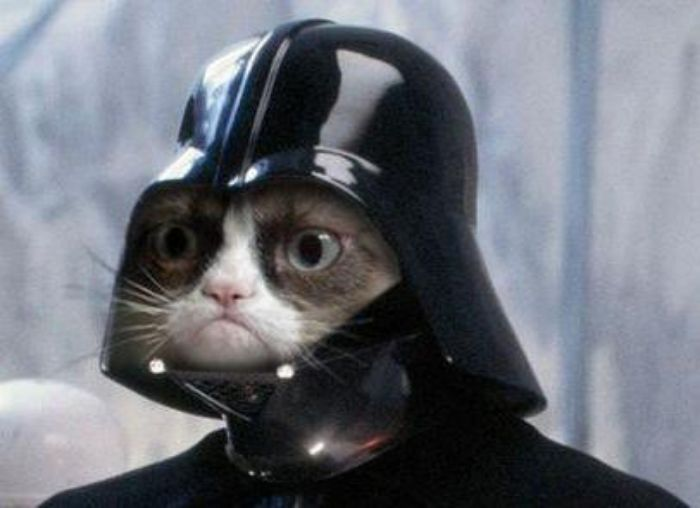 Grumpy Cat Star Wars Meme